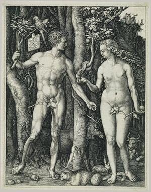 "Albrecht Durer ""Adam and Eve"" 1504. image courtesy of www.metmuseum.org"