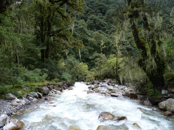 paro-river